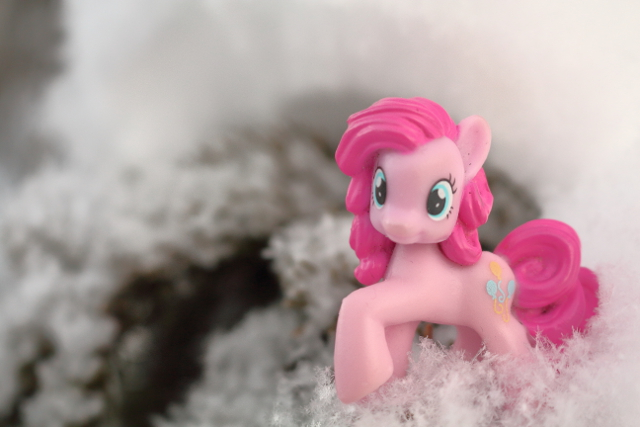 Pinkie at winter time